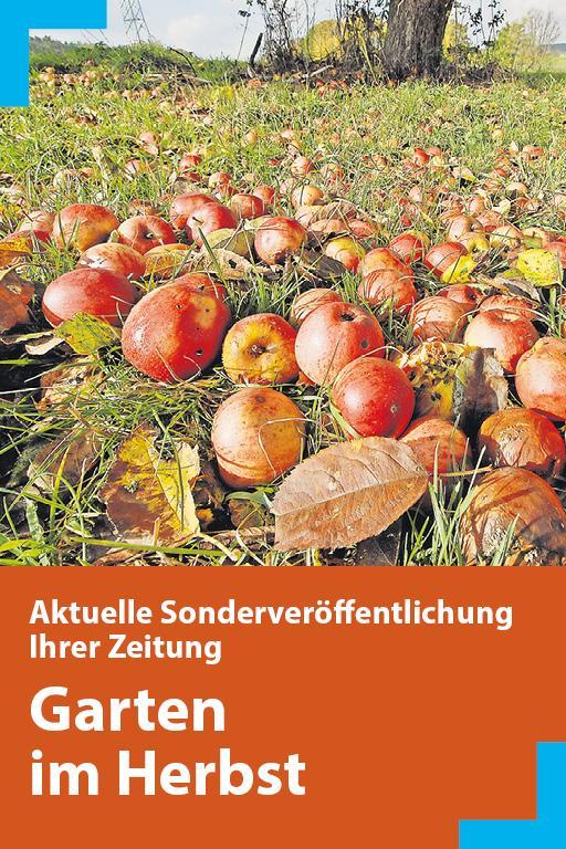 http://mediadb.nordbayern.de/werbung/anzeigen/garten_herbst_nm_2018.html
