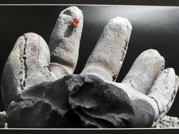 """Der """"Landeplatz Handschuh"""", gesehen von Friedrich Müller, gehört zu den Exponaten im M 11."""