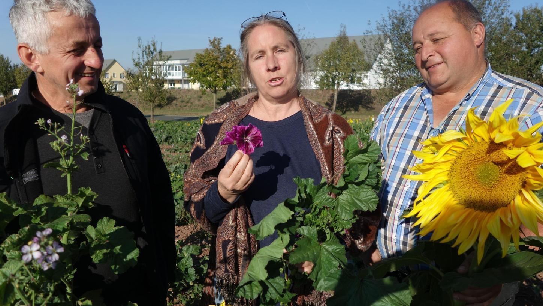 Was blüht denn da? BBV-Kreisobmann Peter Köninger, BN-Vorsitzende Sabine Lindner und Landwirt Rainer Niederhöfer freuen sich über die Blüten, die der Natur gut tun.