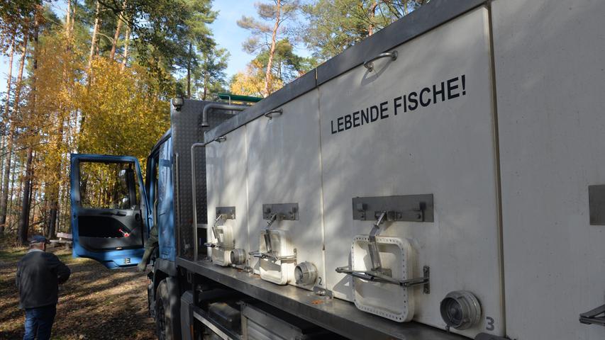 Rund 300 Zentner Karpfen und noch etliche andere Fische sind aus dem Kleinen Bischofsweiher in Dechsendorf abgefischt worden. Im Röttenbach werden die abgefischten Fische zwischengelagert, um dann in Spezialbehältern zu den Kunden gefahren zu werden. .Foto: Klaus-Dieter Schreiter