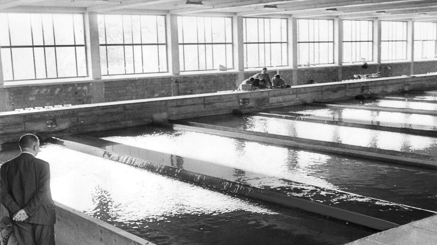 """""""Nicht so wohlschmeckend"""": das oftmals im Wasserwerk Mühlhof eingespeiste Pegnitzwasser."""
