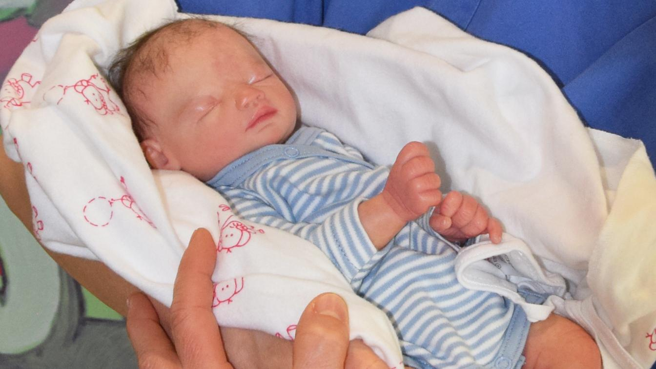 Das neue Nachsorge-Angebot Harl.e.kin unterstützt Familien mit früh- oder risikogeborenen Kindern. Unser Bild zeigt die Frühchenpuppe Lewis.