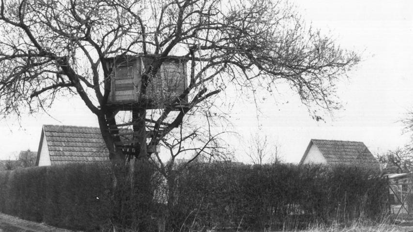 Anfang der 1980er-Jahre geriet ein Nürnberger Baumhaus in die Schlagzeilen, weil sich dort etwas Grausiges ereignet hatte. Abgründe taten sich auf, die selbst erfahrene Ermittler und Juristen erschütterten: Ein Teenager tötete dort zwei kleine Jungen.
