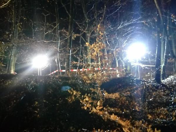 An einer unzulänglichen Stelle im Wald zwischen Haibach und Gailbach fanden die beiden Spaziergänger das Skelett.