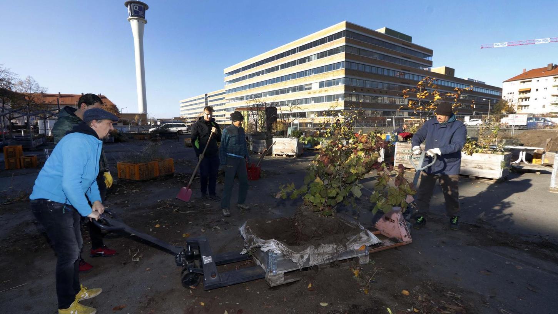 Ab in die Winterpause: Die letzten Aufräumarbeiten an der Wandererstraße gingen Ende November über die Bühne.