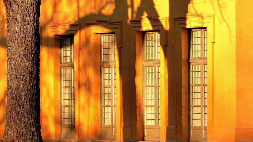 Die Schatten der Bäume werden von den Morgenstrahlen der Sonne an die Wand der Orangerie im Schlossgarten Erlangen projiziert