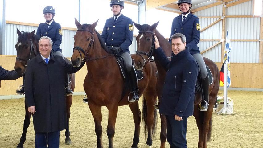 Das sind die ersten Pferde der Reiterstaffel der Polizei Nürnberg