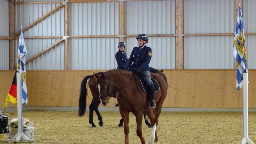 Reitersaffel Polizei Nürnberg, Vorstellung der ersten 4 von 35 Pferden, 11.01.201, ToMa/Grau
