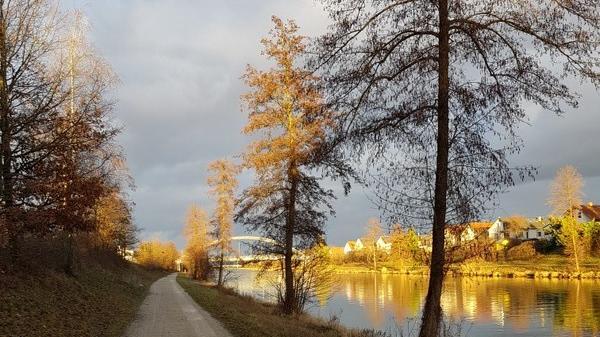 Ein sonniger Moment sorgt im tristen Wintergrau für einen Lichtblick. Fotografiert am Main-Donau-Kanal in Richtung Mögeldorf.