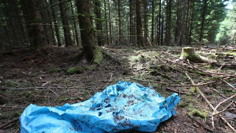 Im Sommer 2016 entdeckte ein Pilzsammler im Wald bei Rodacherbrunn Knochen. Das Labor bestätigte: Sie stammen von Peggy.