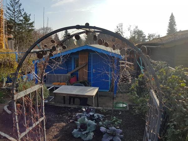 An der Grimmstraße in Erlenstegen kämpfen derzeit Kleingärtner und Nachbarn der Anlage um den Erhalt ihrer grünen Oase.