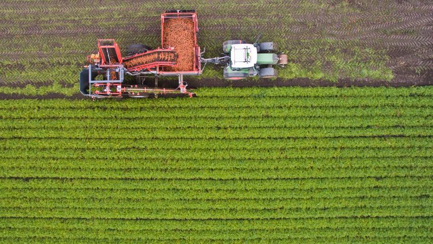 ... des Volksbegehrens: Der Anteil der Bio-Landwirtschaft an der Agrarfläche in Bayern soll von heute circa zehn Prozent auf mindestens 20 Prozent im Jahr 2025 und auf 30 Prozent im Jahr 2030 gesteigert werden. Der Grund: Öko-Bauern verzichten weitgehend auf giftige Chemikalien, davon sollen Bienen, Hummeln und andere Insekten profitieren. Zudem blühen auf Bio-Äckern oft mehr verschiedene Pflanzen, wodurch Insekten mehr Nahrung finden - und dadurch auch Vögel und andere Arten.