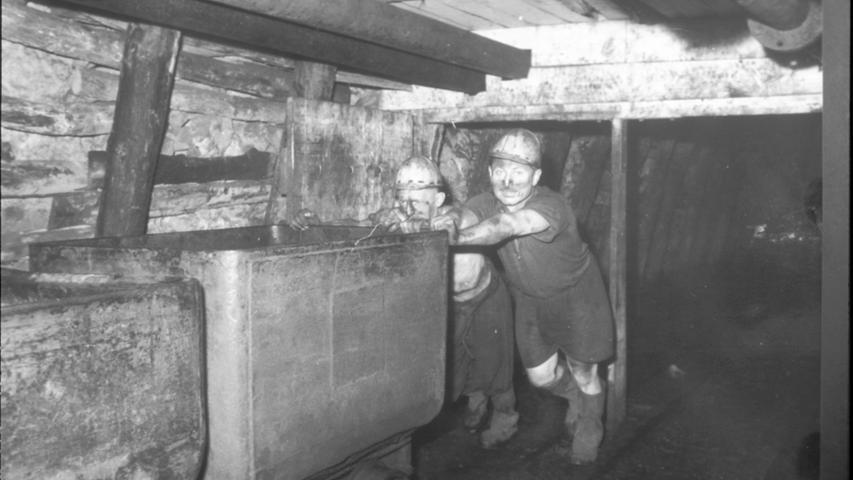 ...unter Tage mussten die Bergleute die Kohlekarren bewegen, die gefüllt etwa 14 Zentner schwer waren. In den 1930er Jahren wurden dafür noch Pferde eingesetzt. Sie waren ein Jahr in der Tiefe im Einsatz. Dann waren sie blind und mussten geschlachtet werden.
