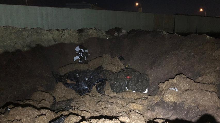 Am 18. Februar 2019 wurde bei Bauarbeiten an der Proeslerstraße in einem Industriegebiet in Höfen eine 250-Kilogramm-Bombe entdeckt. Die Polizei sperrte das Gebiet um den Fundort weiträumig ab, rund 5000 Menschen wurden evakuiert. Die Bombe musste gegen 23 Uhr schließlich kontrolliert gesprengt werden, eine Entschärfung war nicht möglich..