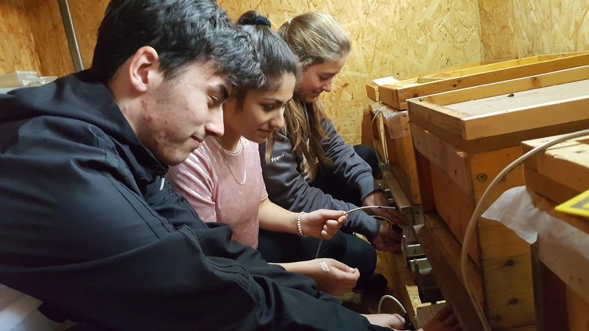 Tim Dürnberger (15), Franziska Göppel (15) und Ronahi Gürgöz (15) von der Betty-Staedtler-Mittelschule Wassertrüdingen haben ein digitales Bienenhaus gebaut, in dem mit Sensoren Daten wie Temperatur, Feuchtigkeit und Gewicht in einem Bienenvolk aufgezeichnet werden, um so Umwelteinflüsse sichtbar zu machen. Das Projekt der Mittelschüler steht nun im Landesfinale. Hier geht es zum Artikel
