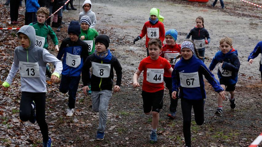 Forchheim , am 16.03.2019..Ressort: Sport Foto: Stefan Hippel ..Kellerwald, Kellerwald-Crosslauf der LG Forchheim , Bezirksmeisterschaft , Crosslauf, Laufen, Jugend U12