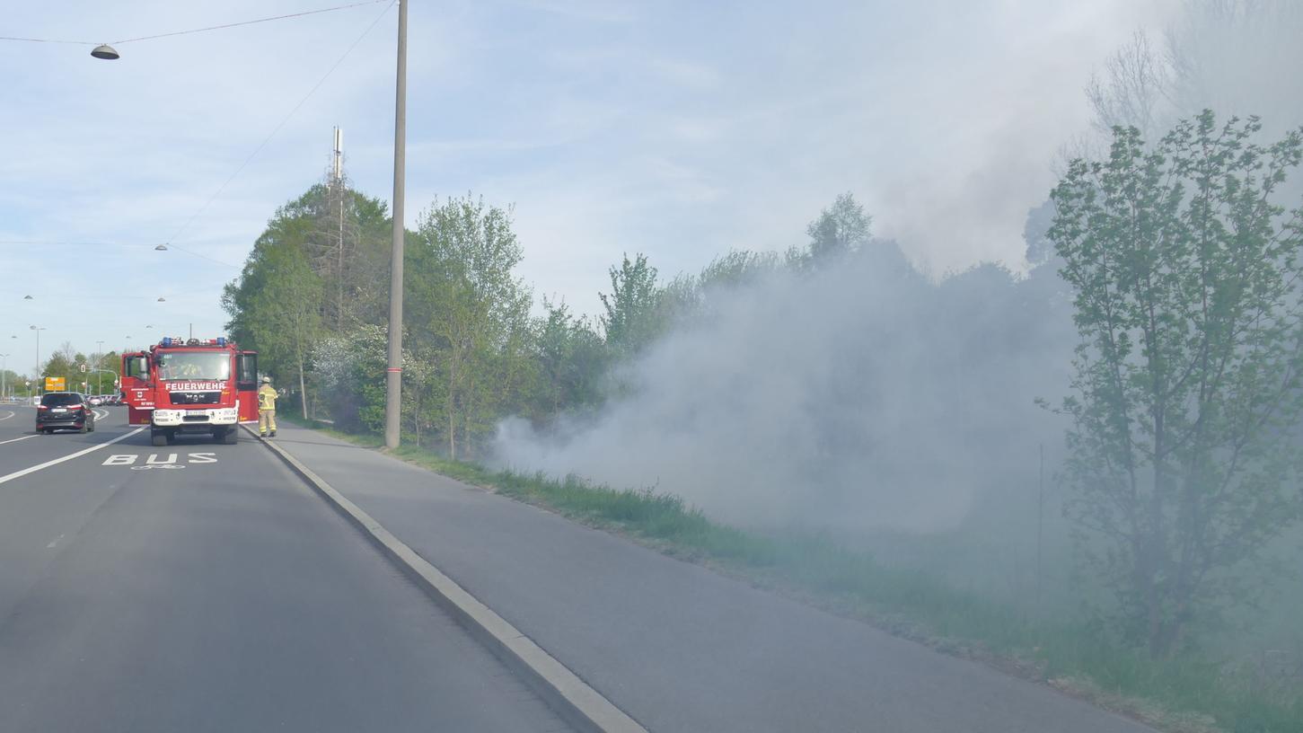 Feuer in Oberfürberg brennt Wiese und Büsche nieder