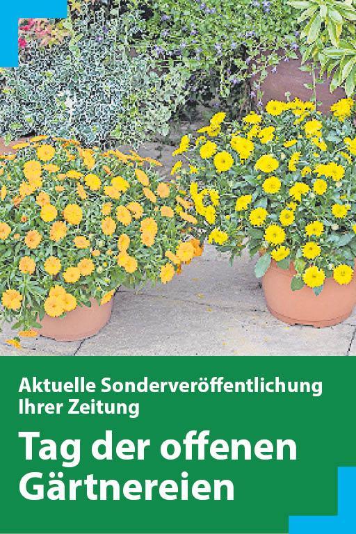 https://mediadb.nordbayern.de/werbung/anzeigen/garten_fn_25042019.html