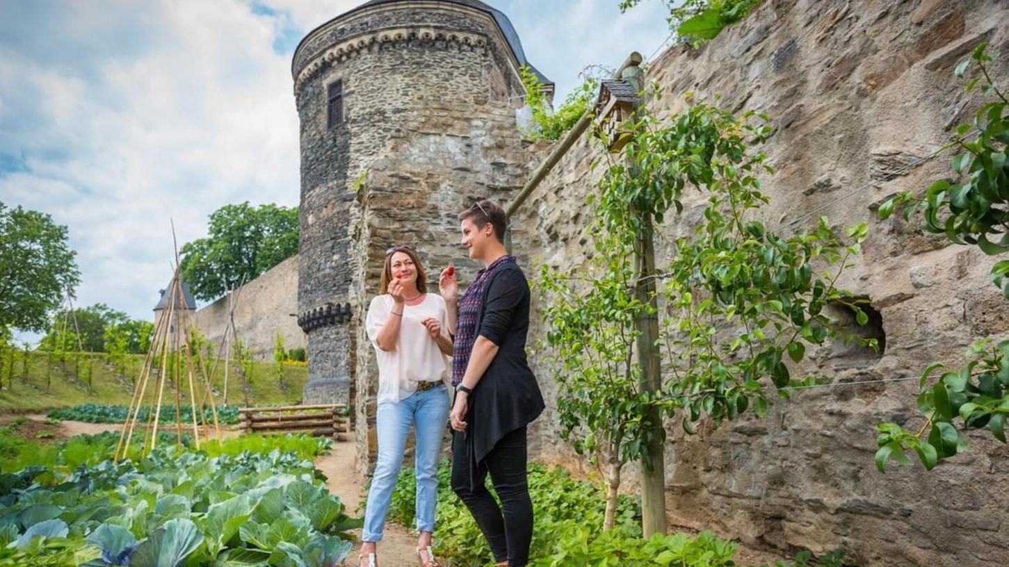 So wie in Andernach soll es auch in Nürnberg grünen und blühen. Hier findet der Anbau von Obst und Gemüse zur freien Verfügung der Bürger schon statt.