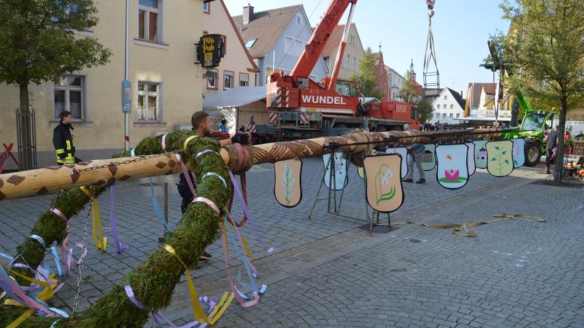 Die Traditionspflege wird in Altmühlfranken großgeschrieben, wie man am Vorabend des 1. Mai deutlich wurde. In vielen Dörfern wurden schmucke Maibäume aufgestellt, hier in Wassertrüdingen.