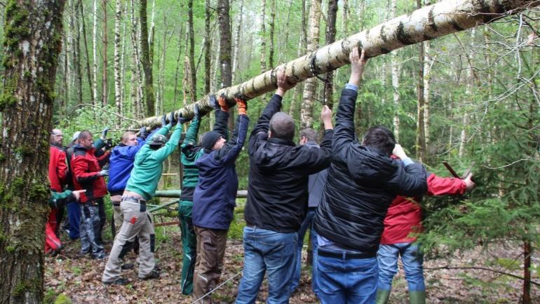 Auch in den Polsinger Heimen wird die Tradition des Maibaumaufstellens aufrecht erhalten.