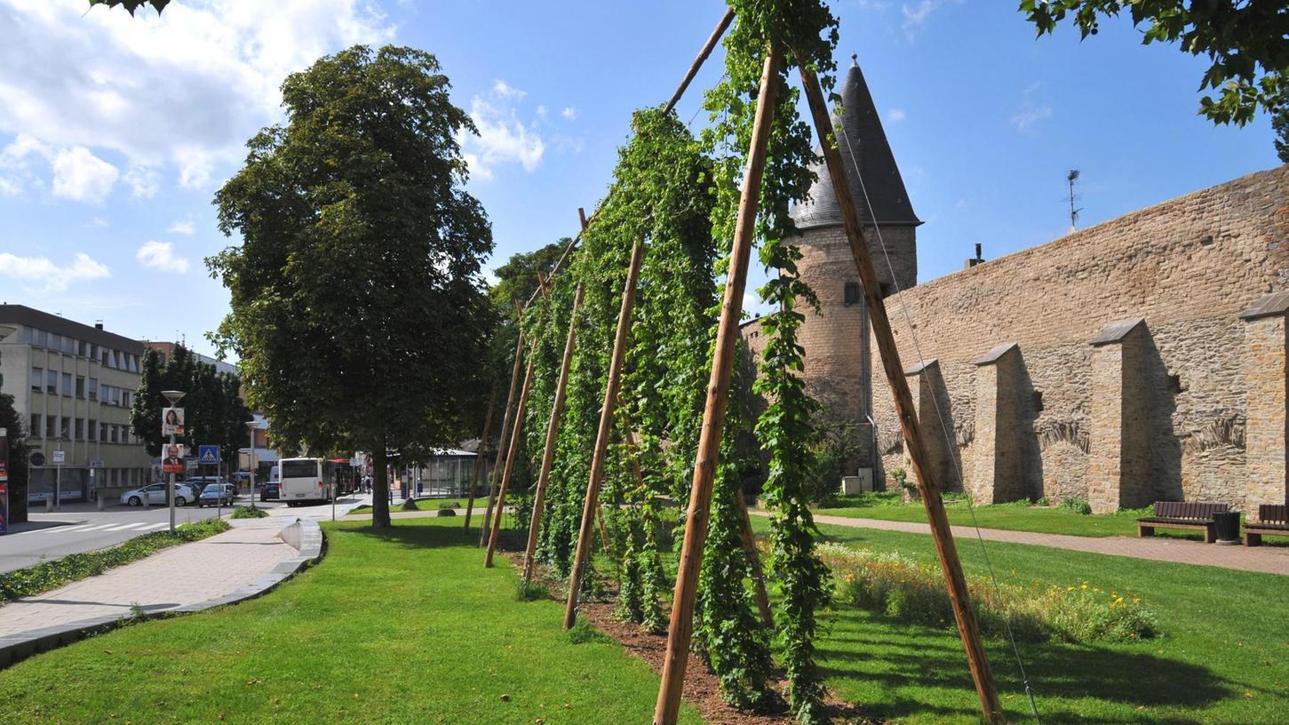 Die Stadt Andernach macht es vor: Dort gibt es das Projekt
