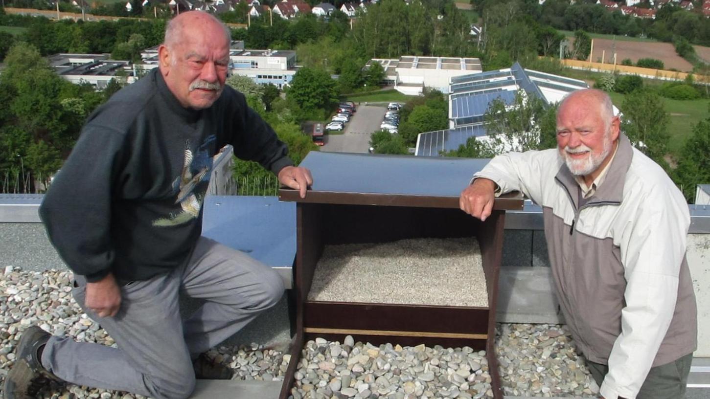 """Gestern Vormittag haben Falkner Kurt Hussong und Günter Löslein vom Landesbund für Vogelschutz den neuen Nistplatz auf dem Dach des """"Sonnenturms"""" installiert."""