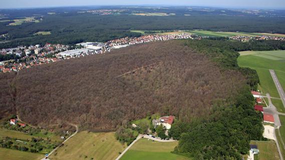 Das ganze katastrophale Ausmaß des Schadens, den die Schwammspinnerraupen im Gunzenhäuser Burgstallwald angerichtet haben, zeigt dieses Luftbild. Nur noch Richtung Frickenfelden und an den Rändern zum Reutberg sind die Bäume unversehrt.