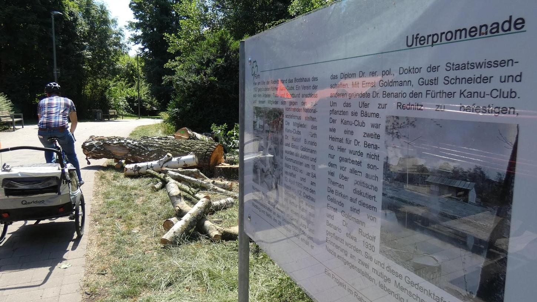 Diese Tafel an der Uferpromenade erinnert an die Fürther Rudolf Benario und Ernst Goldmann, die 1933 im KZ Dachau ermordet wurden. Zum Mahnmal gehörten auch die Birken, die nun gefällt werden mussten (im Hintergrund).