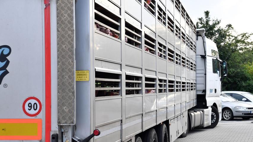 Der Import lebender Tiere betrug im vergangenen Jahr 779.000 Tonnen Schlachtgewicht. Im Vergleich dazu wurden 546.000 Tonnen Schlachtgewicht in ein anderes Land exportiert. Die Schlachtmenge von Fleisch in Deutschland betrug im Jahr 2018 etwa 8,7 Millionen Tonnen.
