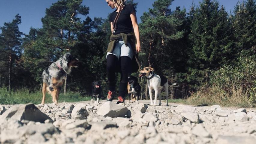 Was in anderen Ländern und in deutschen Großstädten schon selbstverständlich ist, wird seit einiger Zeit auch in Forchheim gut angekommen: ein Dogwalker-Service. Vanessa Bähr bietet ihn an und...
