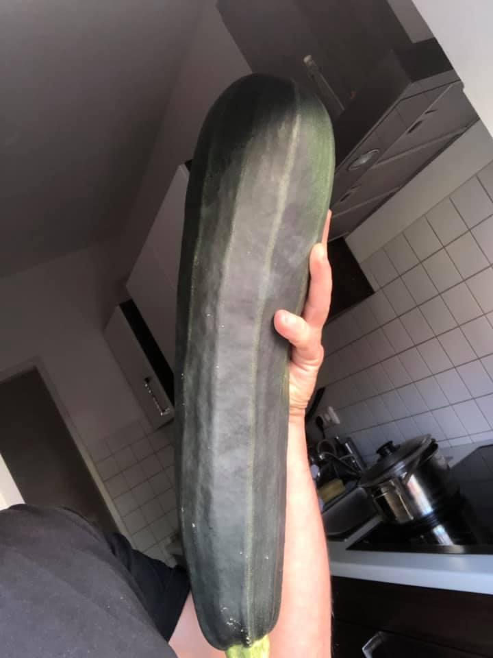 Bei Don Francesco kommt ebenso eine besonders große Zucchini auf den Tisch. Vorher muss sie nur noch fachkundig zubereitet werden.
