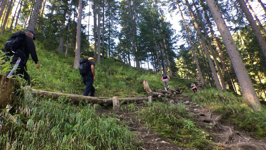 Ein guter Tritt und ein bisschen Kondition sind schon nötig, um die Wanderungen an den steilen Hängen des Val di Sole zu genießen. Aber...