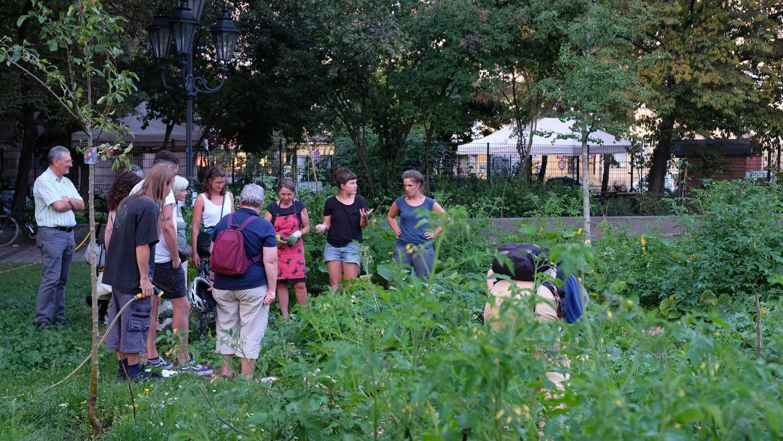 Zwischen Jakobskirche und Feuerwache ist ein städtischer Garten entstanden: Die Organisatoren zeigen Anwohnern, was es hier alles zu sehen (und essen) gibt.