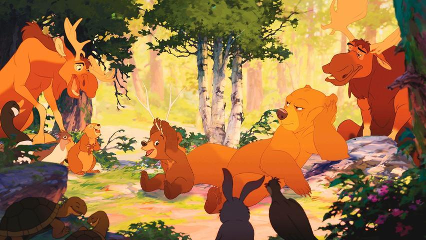 Familiendramen gehören sozusagen schon fest zur Handlung eines guten Disney-Films. Zumindest sollen die Filme, trotz ihrer märchenhaften Geschichten, ihres Sinns für Humor und ihrer liebreizenden und sympathischen Charaktere, ihr junges Publikum auch auf die ernsteren Seiten des Lebens vorbereiten. In Bärenbrüder ist das nicht anders: Die Geschichte zentriert sich um den jungen Inuit Kenai, der seinen älteren Bruder an einen Bären verliert. Er sinnt auf Rache – und wird dabei durch einen alten Zauber selbst in einen Bären verwandelt. Dabei freundet er sich ausgerechnet mit dem verwaisten Bärenjungen Koda an, dem er nun selbst wie ein großer Bruder wird. Die bärenstarke Geschichte berührt das Herz und erzählt von Liebe, Akzeptanz und Vergebung.