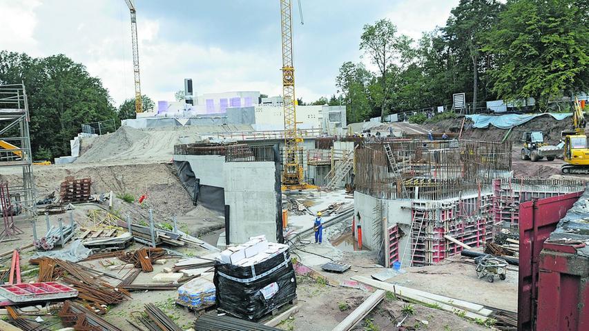In der Zeit danach wurde mit Hochdruck an dem Projekt gearbeitet, damit man den Zeitplan einhalten konnte. Der Tiergarten wurde teilweise zu einer großen Baustelle.