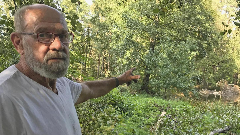 Werner Trommer ist erbost: Sein Pfirsichbaum im Weiler Treffersäge wurde von einem Unbekannten illegal abgeerntet. Wer sich das reife Obst ohne Trommers Erlaubnis angeeignet hat, ist nicht bekannt.
