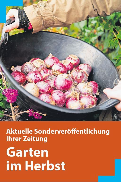https://mediadb.nordbayern.de/werbung/anzeigen/Garten_im_Herbst_200919.html