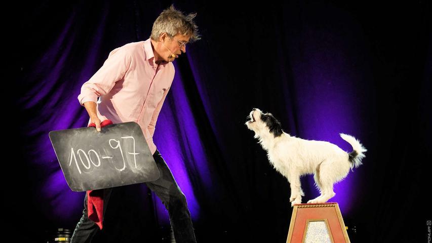 Artistik und Comedy sah das Abendprogramm beim Gunzenhäuser Kulturherbst in der Innenstadt vor, verschiedene Varieté-Künstler traten auf der Sparkassenbühne auf, hier zeigte die Comedy Dog Show mit Florin, Cato und (nicht auf dem Bild) Felicitas ihr können.