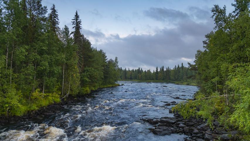 Touristen, die noch im August durch Lappland streifen, brauchen in der Regel einen guten Mückenschutz. Im September ist der aber nicht mehr nötig. Viel früher als in Deutschland setzt hier oben der Herbst ein, zu kalt oder zu nass ist es deshalb aber noch lange nicht.