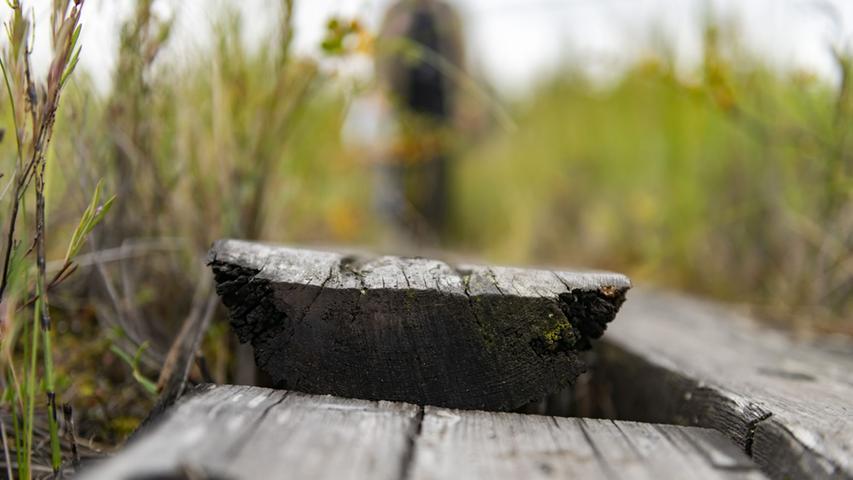Etwa alle fünf Jahre muss das Holz ausgetauscht werden, weil es durch die ständige Nässe von unten zerfällt. Die Finnen legen großen Wert darauf, nur unbehandeltes Holz zu verwenden. Dass in letzter Zeit auch ausgediente Strommasten recycelt und für die Wanderwege zurechtgesägt werden, wurde heftig diskutiert. Denn diese Masten wurden zur besseren Haltbarkeit ursprünglich mit Chemie behandelt. Der Gedanke, das Holz sinnvoll so lange weiter zu benutzen, bis es auch als trittfester Untergrund für Wanderer ausgedient hat, überwog allerdings.