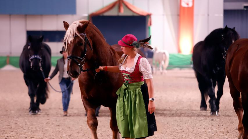 Foto: Eduard Weigert 1.11.19....Conumenta Faszination Pferd Top Gala
