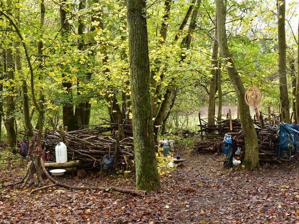 Mit Ästen, Stämmen und Co. schaffen sich die Kinder hier im Wald ihr eigenes kleines Reich – genug Platz gibt es dafür allemal.