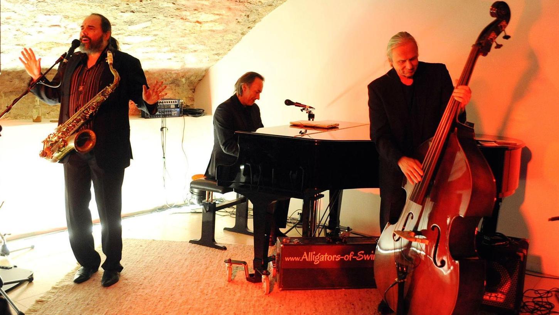 """Das Gewölbe der Residenz war einen swingenden Abend lang ein schummriger Musikkeller, in dem die Musiker der """"Alligators"""", Stefan Scholz, Dieter Schreiber und Christian Jung (am Klavier) die Zeit, das Alter, die Sorgen, halt einfach alles, vergessen ließen."""
