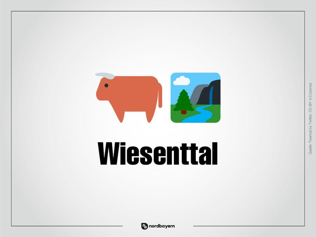 Motiv: Emoji-Rätsel Ortsteile im Landkreis Forchheim; Wiesenttal; Bilderrätsel; Emoji; Smiley Foto: nordbayern.de