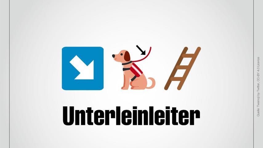 Ein Pfeil, der nach unten zeigt, ein Hund mit Leine und eine Leiter: Das ist Unterleinleiter.