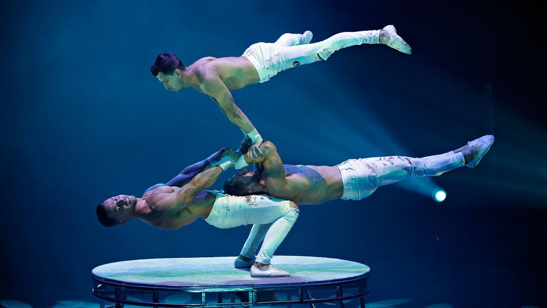 Auf spektakuläre Akrobatik müssen die Zirkus-Fans in Nürnberg in dieser Wintersaison verzichten: Der Zirkus Flic Flac hat seine Weihnachtsshow wegen der Corona-Pandemie abgesagt.