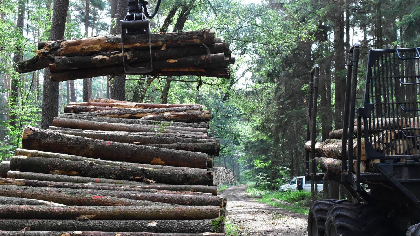 Die Stämme stapeln sich in hohen Mieten an Waldwegen. An diesem Bild wird sich bis auf Weiteres nichts ändern. Trockenheit und Borkenkäfer haben den Wald nachhaltig geschädigt. Viel Schadholz muss noch aufgearbeitet werden.