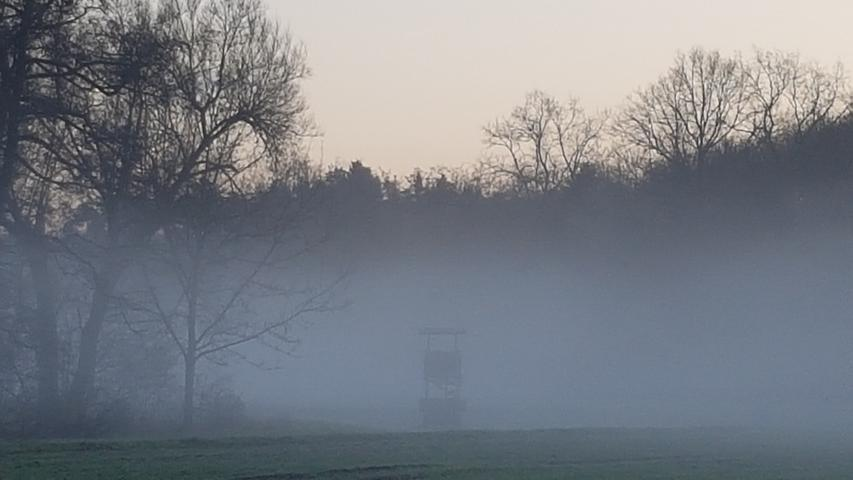 Ein Jägerstand verschwindet fast im Nebel des Schwabachtals bei Uttenreuth.