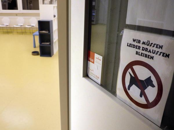 Ein Raum in der Tierklinik, in den keine Hunde dürfen? Mag auf den ersten Blick kurios aussehen, aber: Es ist das Katzenwartezimmer.